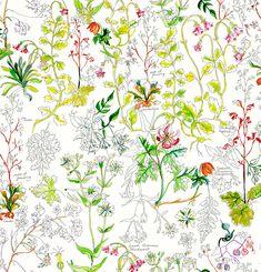 A nova coleção Nike x Liberty of London – marca inglesa famosa por suas icônicas estampas florais, chega ao Brasil com desenhos botânicos e tênis clássicos.