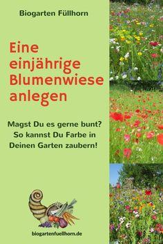 Du erfährst hier, wie man bunte Blumenwiesen im Garten anlegt. #blumenwiese #garten #bunte Blumen