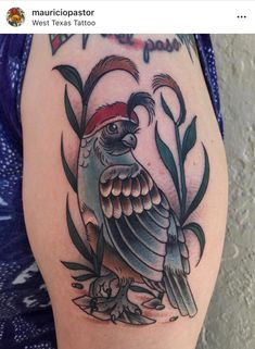 Quails, Skull, Ink, Tattoos, Tatuajes, Quail, Tattoo, India Ink, Tattos