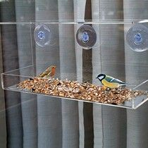 Best Window Bird Feeders with Suction Cups Reviews