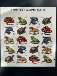 Animal Years, Animals Planet, Reptiles And Amphibians, Stamps, Seals, Postage Stamps, Stamp