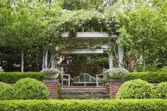 Terrace Garden — Falkner Gardens Outdoor Rooms, Outdoor Living, Inside Pool, Growing Gardens, Terrace Garden, Shade Garden, Garden Planning, Beautiful Gardens, Garden Design