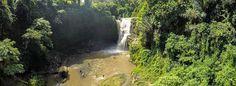 Beautiful waterfall in Bali! #Indonesia #Bali #TegenunganWaterfall