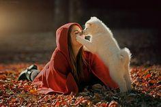 Akita by LuisValadares #animals #animal #pet #pets #animales #animallovers #photooftheday #amazing #picoftheday