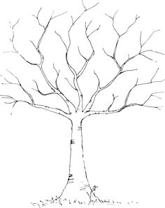 tree-black-white-hi.png (474×598)