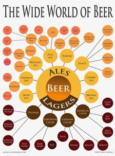 Brewology 101: Ales vs. Lagers | Boards and Barley