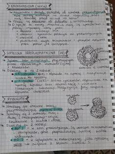 Upsc Notes, Study Notes, School Organization Notes, School Notes, High School Biology, Science Notes, Future Jobs, Marine Biology, Biologist