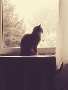 Grey :-)