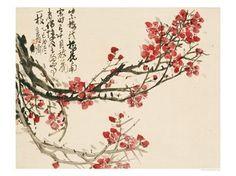 fleurs cerisier