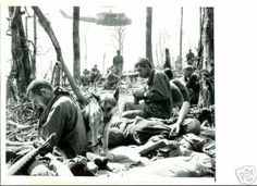 New York Bureau—On Hill 875, A Deathly Peace---Dak To, South Vietnam: As peace once again settles over Hill 875, weary GI's of the 173rd Airborne rest amid the shattered trees on that dearly-bought piece of real estate in the highlands near Dak To. An Army dog sits next to his master and a helicopter provides the only sign of activity in this quiet scene where sounds of battle rang out only days before. But it is the peace of death---158 men of the 173rd gave their lives in the furious…