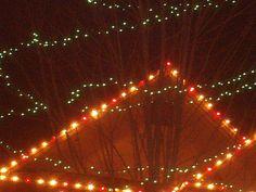 PT DEC 2014 NAMPA IDAHO CHRISTMAS LIGHTS SEEN THROUGH TREE BANCHES.