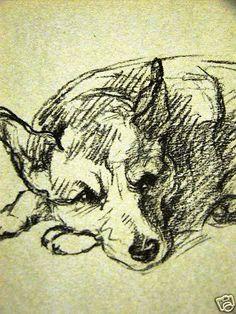 Lucy Dawson 1937 Welsh Corgi Dog Art Print Matted | eBay