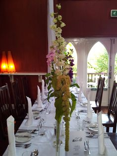 Tall and droopy - a perfect combination - for flowers!