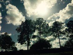 Afternoon skies
