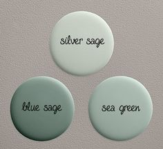 silver sage for the kitchen (resotration hardware) but Benjamin moore has similar color (grey wisp)..... gotta check this out