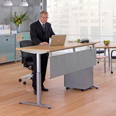 IFE Infinity Electric Adjustment Rectangular Desk