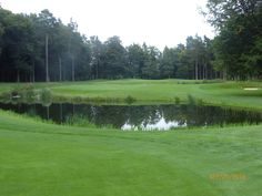 The Marquess course at Woburn,great short par4.
