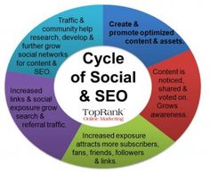 seo cycle of social media