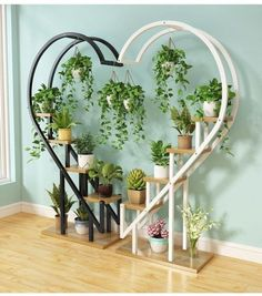 Living room household flower shelf, multi-storey indoor balcony iron circular shelf, decorative green lotus pendant orchid shelf - All About Balcony House Plants Decor, Plant Decor, Diy Bedroom Decor, Diy Home Decor, Indoor Balcony, Chlorophytum, Household Plants, Balcony Flowers, Decoration Plante