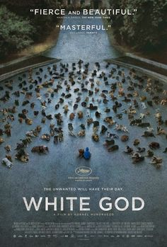 """White God - Winner of the Prize Un Certain Regard Award at this year's Cannes Festival, Kornel Mundruczo's newest film is a story of the indignities visited upon animals by their supposed """"human superiors,"""" Films Récents, Films Cinema, Hd Movies, Movies Online, Horror Films, Netflix Movies Must See, Great Movies To Watch, Indie Movies, Comedy Movies"""