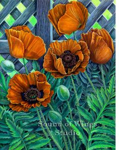 Poppies 8 by 10 inch Archival Art Print by SoundofWingsStudio, $20.00