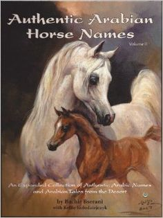 Authentic Arabian Horse Names Volume II Beautiful Arabian Horses, Majestic Horse, Arabian Art, Horse Artwork, Horse Names, Horse Portrait, Most Beautiful Animals, Equine Art, Horse Breeds