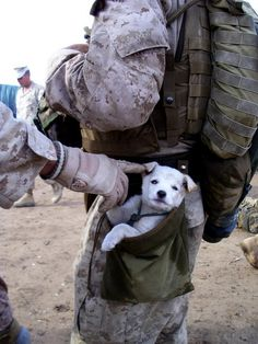 Our great American Soldiers can serve their Country under the worst of conditions, but still have the compassion to protect the defenseless.