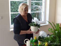 Jak dbać o doniczkowe rośliny domowe ?