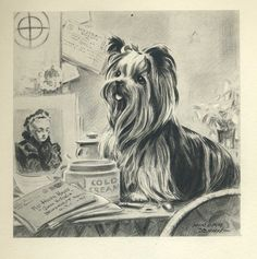 I have this one! Thanknyou Grand Ave Antiques. Love love love!! Sweet YORKSHIRE Terrier Vintage 1940s Dog Print [this one via Etsy].