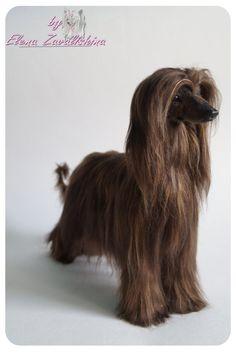 Afghan hound/Afghan hound art/Afghan /Realistic