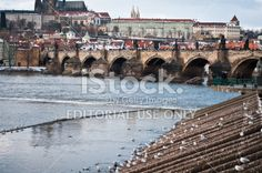 Charles Bridge and Castle of Prague in winter time Royalty Free Stock Photo