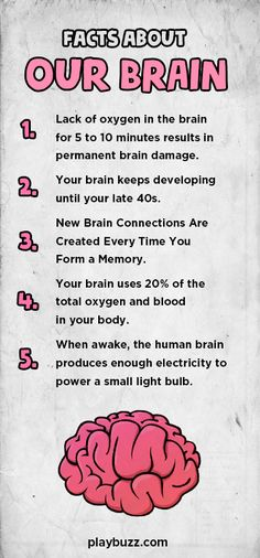 Which part of your brain do you use the most, Right or Left?