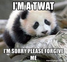 sad panda not sad sad panda tired. sad panda nap for a while - sad panda Funny Animal Pictures, Funny Animals, Cute Animals, Bear Pictures, Pictures Images, Photos, Panda Bebe, Panda Panda, Bored Panda