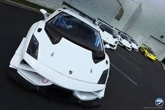 Lamborghini Super Trofeo x 5
