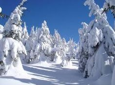 Výsledok vyhľadávania obrázkov pre dopyt Orava Snow, Outdoor, Pray, Outdoors, Outdoor Games, The Great Outdoors, Eyes, Let It Snow
