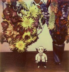 インスタントフィルム作品から制作したプリントで構成:荒木経惟の「淫夢」に酔う « WIRED.jp