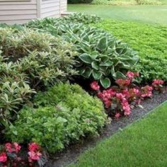 Beautiful Flower Garden For Your Front Yard 54