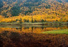 Mooie natuur van Engeland. Mountains, Travel, Painting, Art, Craft Art, Trips, Traveling, Painting Art, Kunst
