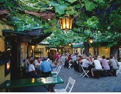Heuriger Weingarten Wien Vienna, hier trinkt man den Wein des heurigen Jahrgangs