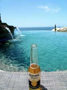 The best vacation buddy. #corona #coronaextra #theplacetobe