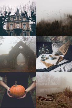 "oftalonsandteeth: "" Misty Autumn Aesthetic ""They belong to the category of half-things: mist, smoke, shrouds, ghosts, membranes, retinas or rags; and they quickly fill up with un-things: old legs and wings and heads and hollow abdomens and body bags..."