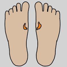 tratament caderea parului nicoleta luciu gravida 3