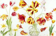 "Elizabeth Blackadder: ""Parrot Tulips"", 21st century - watercolor."