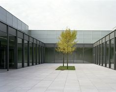 david chipperfield / folkwang museum