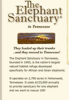 The Elephant Sanctuary : Hohenwald Tennessee.  Forever home and sanctuary for former circus and zoo elephants....