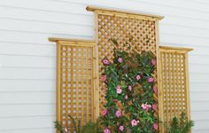 How-to: Add dimension, color, and decoration to a blank space with a sturdy host for climbing plants