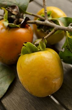Japanese persimmons 柿 KAKI is a very popular fruit in the winter abd so good. Exotic Fruit, Tropical Fruits, Exotic Plants, Fruit And Veg, Fruits And Vegetables, Fresh Fruit, Glazed Pork Chops, Yellow Foods, Delicious Fruit