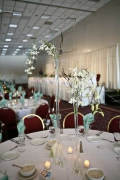 Cheap wedding decoration ideas outdoor gallery wedding dress cheap wedding decoration ideas outdoor gallery wedding dress cheap wedding decoration ideas outdoor images wedding dress junglespirit Images