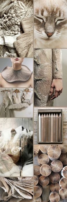 wedding color inspiration in taupe, cream, tan Colour Schemes, Color Trends, Color Patterns, Color Combinations, Mood Colors, Colours, Color Collage, Jolie Photo, Colour Board
