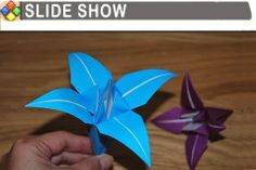 Paper Crafting: Slide Show Lily Flower